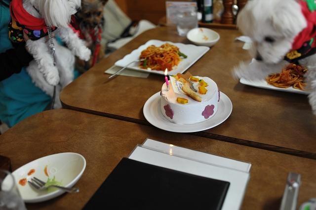 お誕生日 (20).jpg