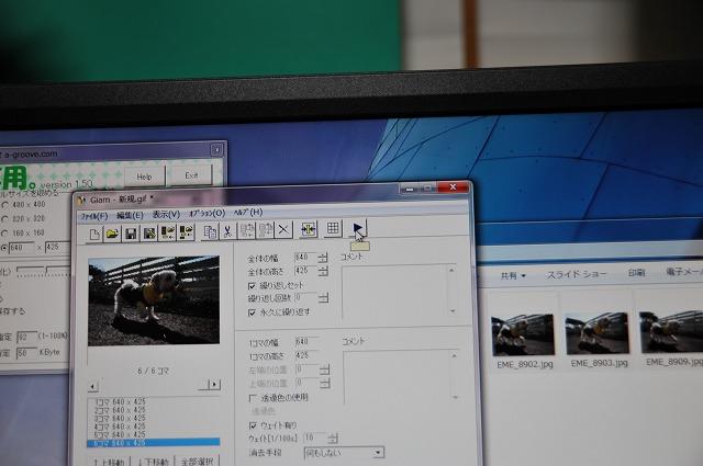 EME_8948.jpg