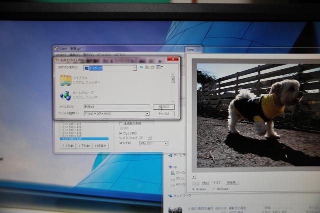EME_8954.jpg